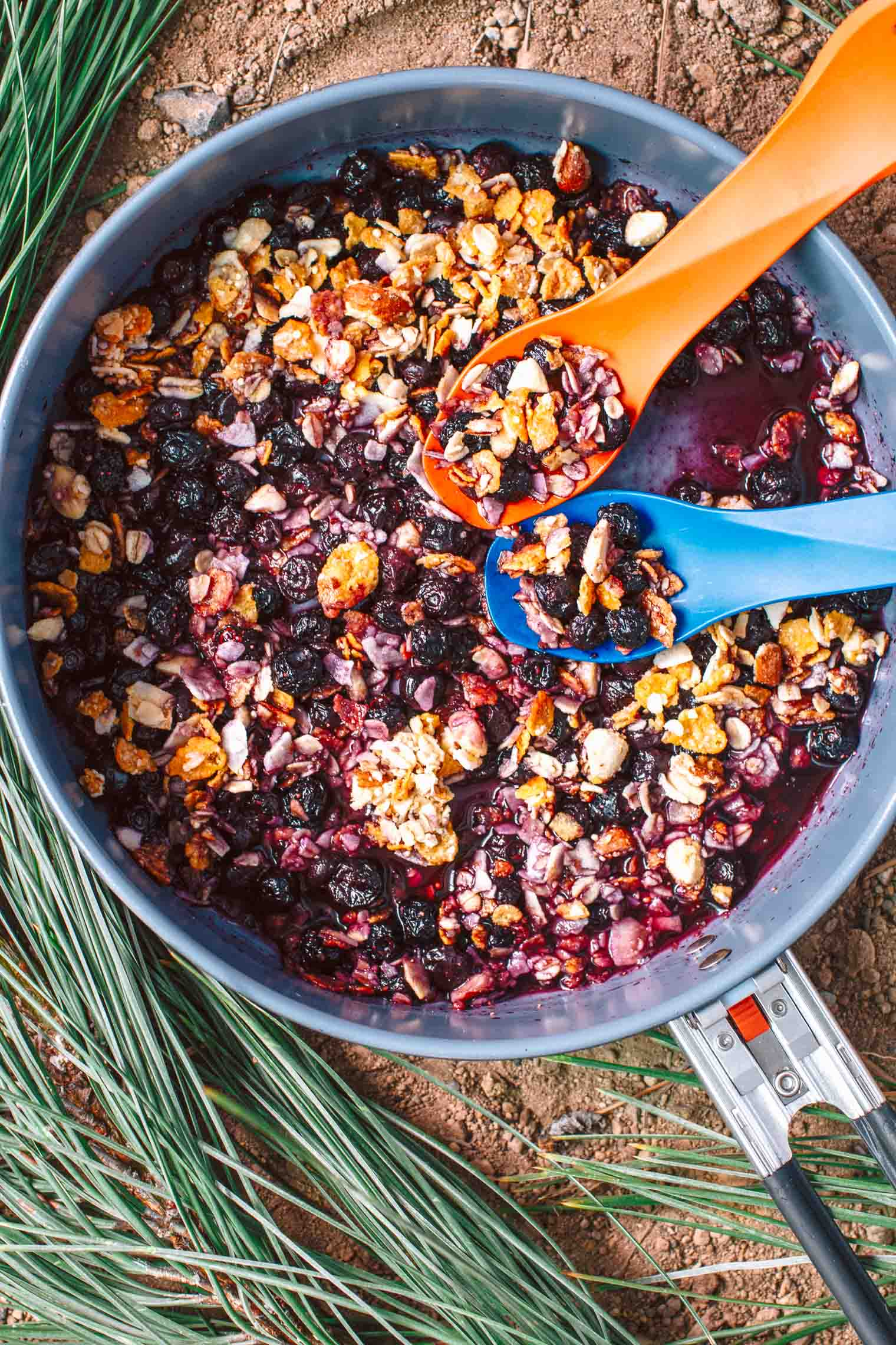 What better way to end a day of backpacking than with a homemade dessert? Get the recipe for this Backpacker's Blueberry Crisp on freshoffthegrid.com
