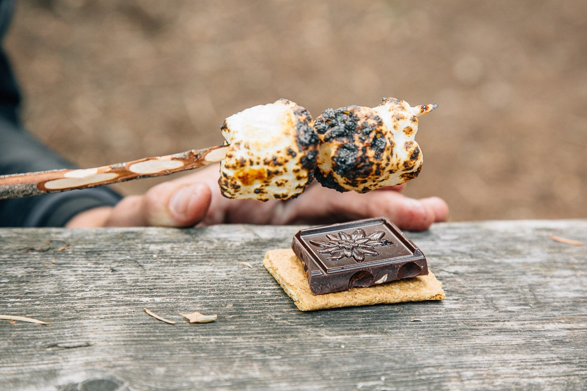 Creative S'mores: Marionberry S'more with Hazelnut Chocolate