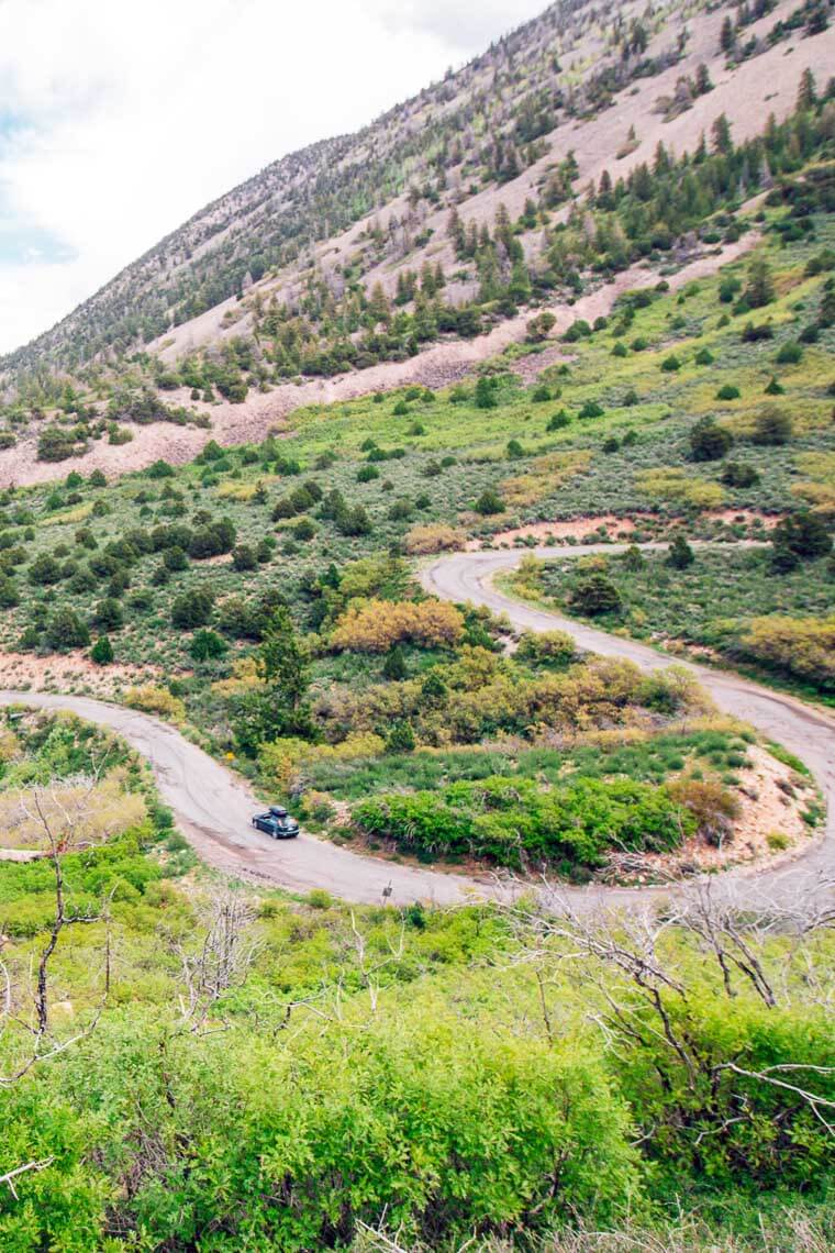 Winding road that is part of the La Sal Mountain Loop