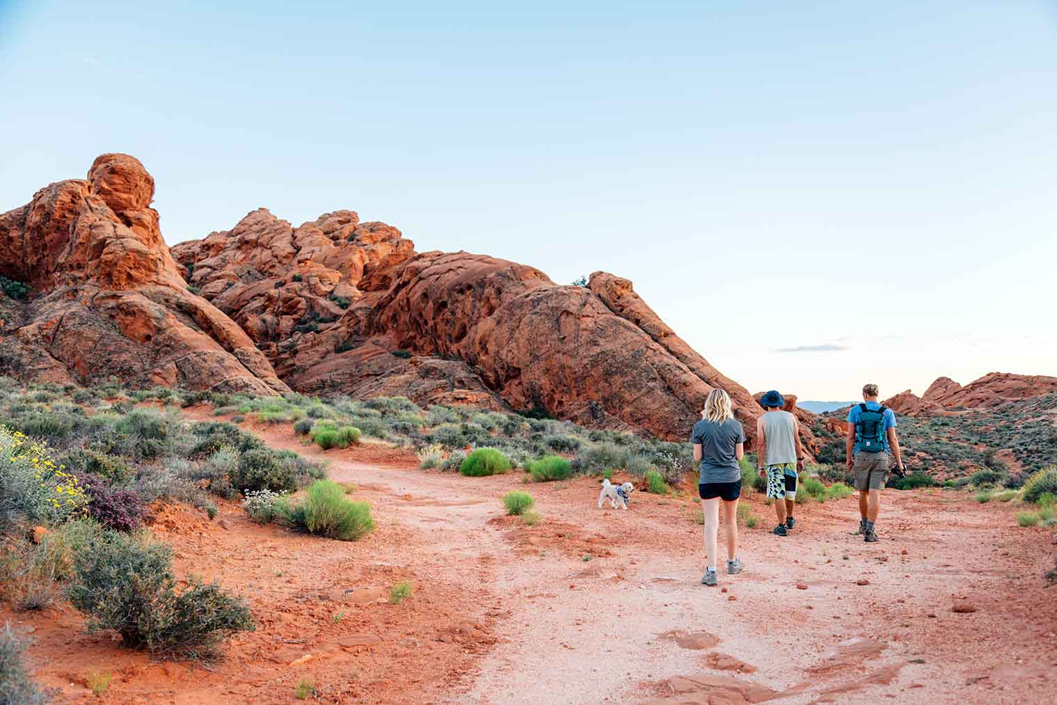 Three friends and a small dog hiking in the red Cliffs desert reserve