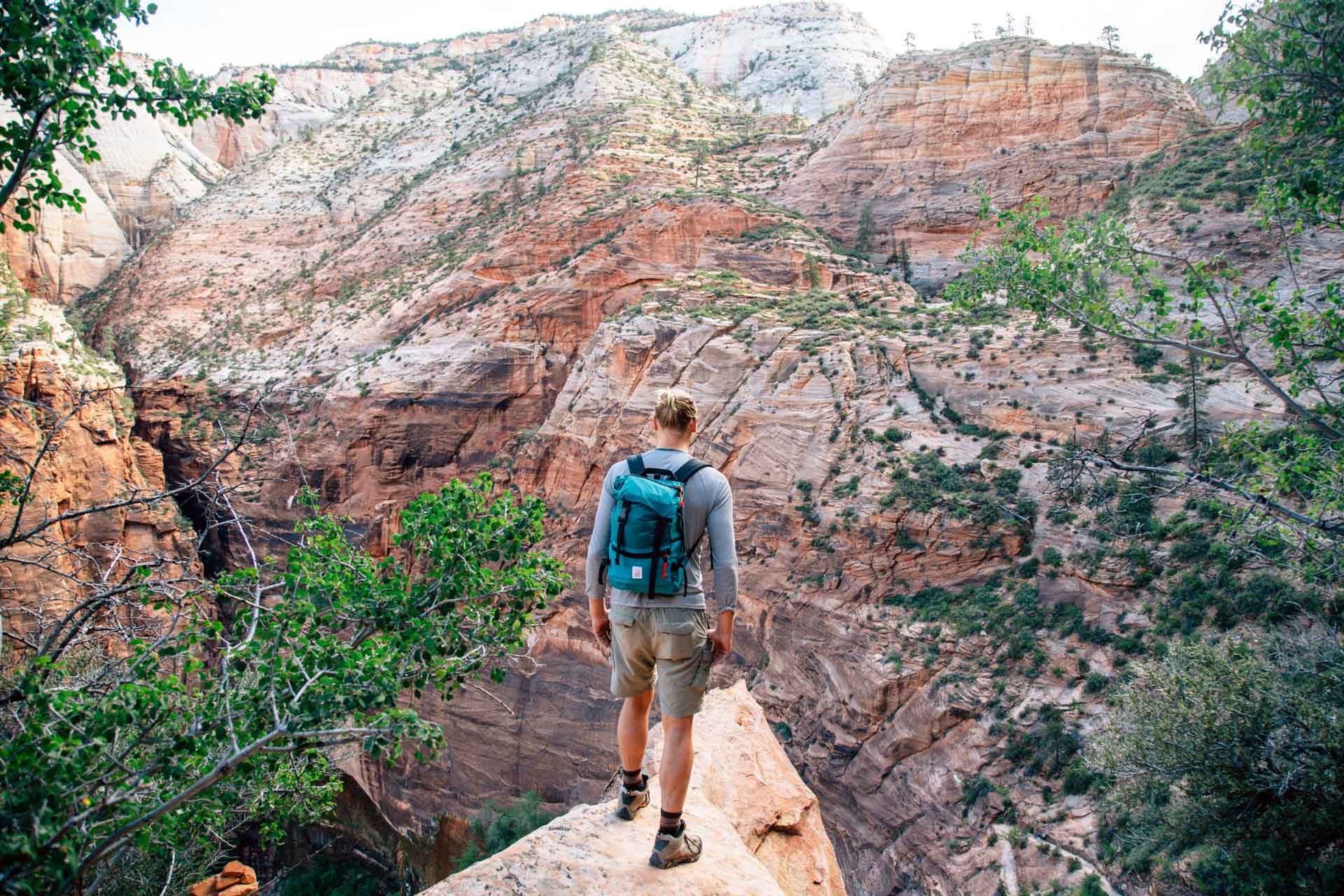 Looking to find some solidude in one of the most popular US National Parks? Check out these 4 hikes in Zion, where we found splendor without the crowds.