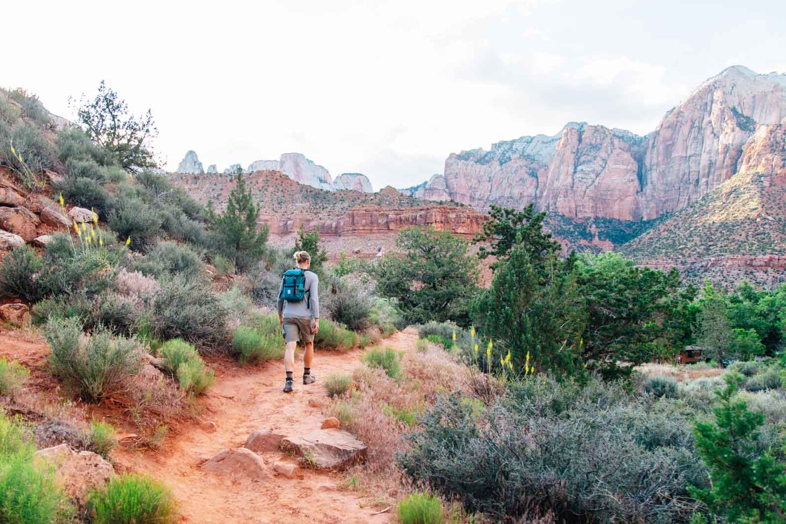 Looking to find some solitude in one of the most popular US National Parks? Check out these 4 hikes in Zion, where we discovered iconic views without the crowds.