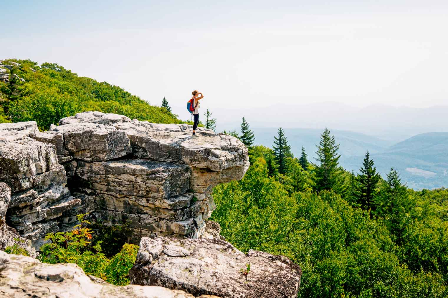 Bear Rocks, Dolly Sods Wilderness in West Virginia