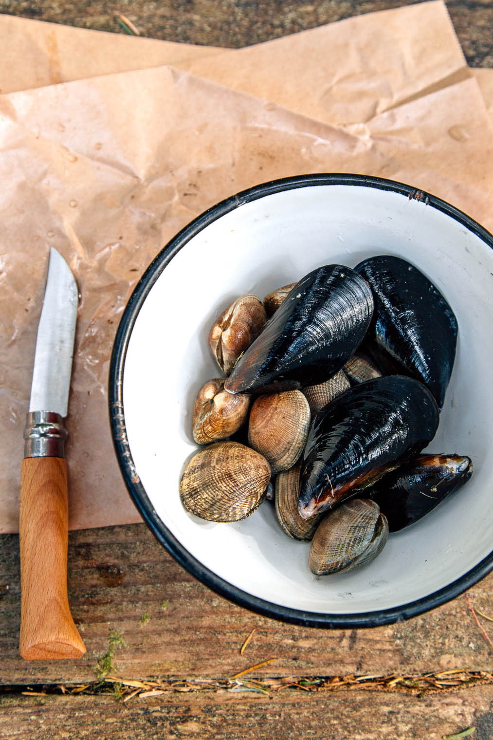 Clams and mussels in a red and white bowl
