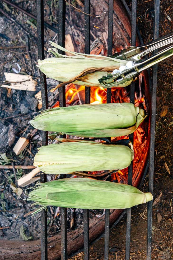 Four pieces of corn on the cob on a campfire
