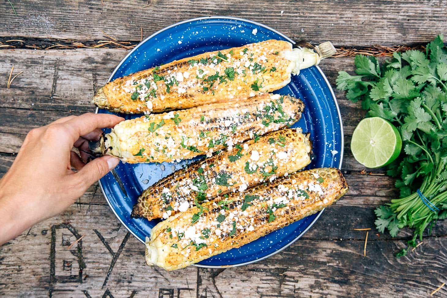 Four Elotes - grilled Mexican street corn - on a blue camping plate. A hand is reaching in to pick one up.