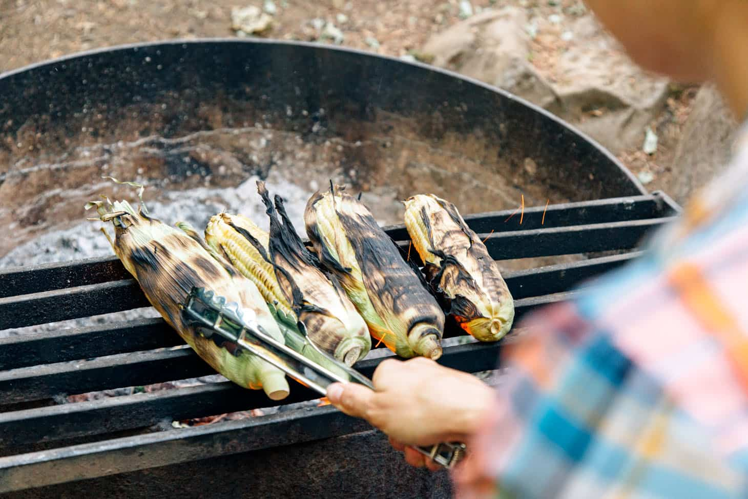 Grilling corn on a campfire