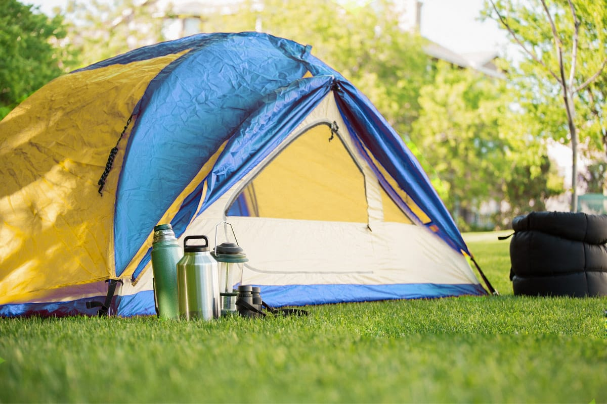 Yellow and blue tent in a backyard
