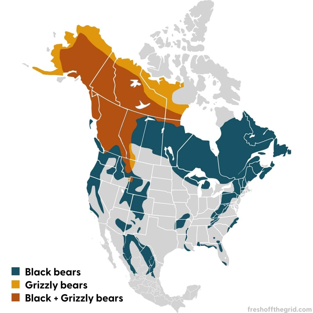 Map of North America depicting black bear and grizzly bear habitats
