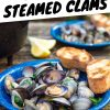 """Clams in a bowl with text overlay reading """"Campfire Steamed Clams"""""""