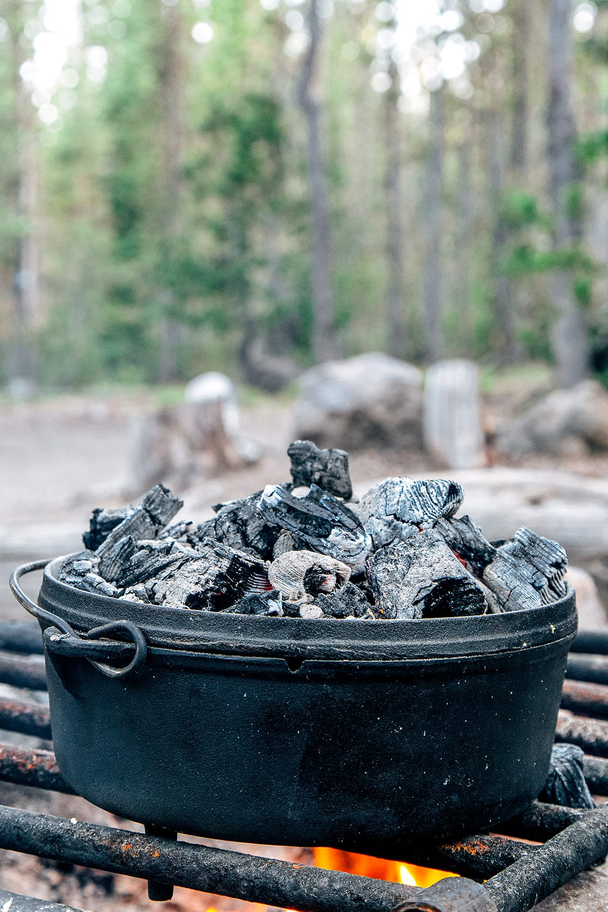 A Dutch oven over a campfire with coals on the lid and pine trees in the background