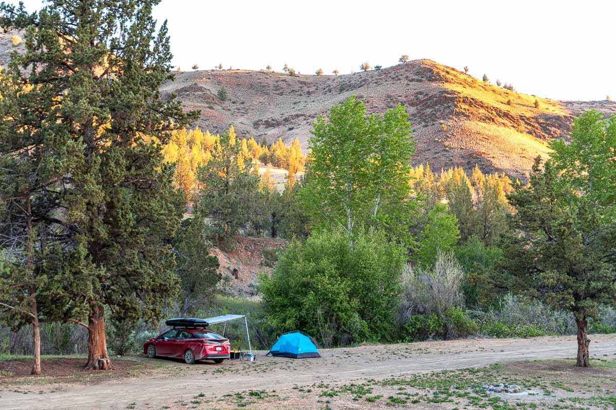 A car and a tent next to trees.