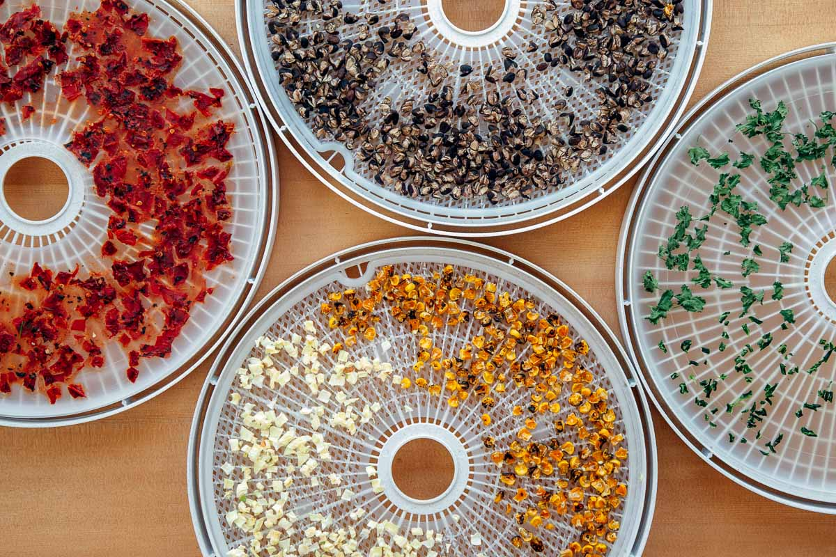 Dehydrated beans, tomatoes, corn, onions, and peppers on round trays.