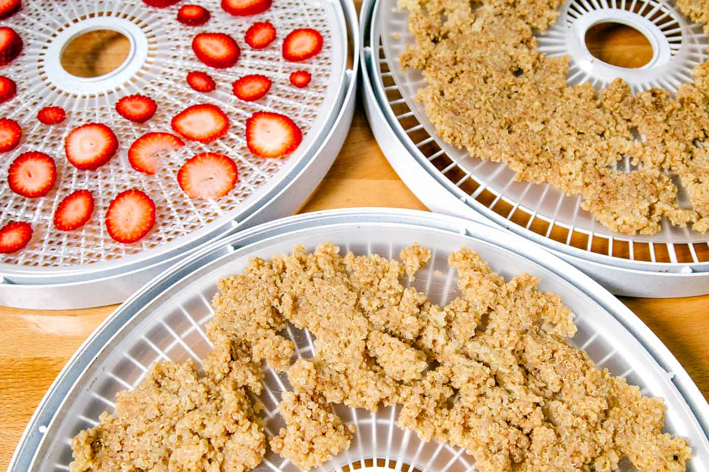 Cooked quinoa and sliced strawberries on dehydrator trays