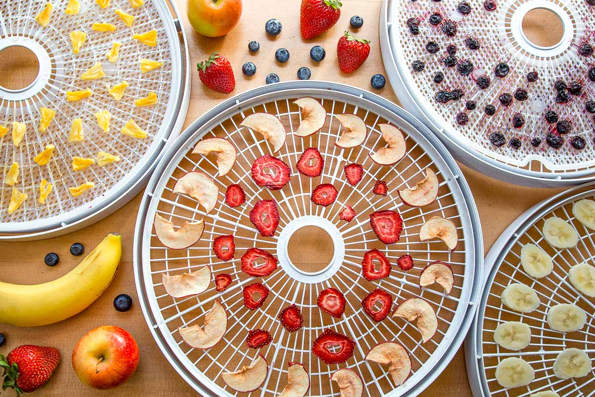 Dehydrated apples, strawberries, pineapples, and blueberries on dehydrator trays