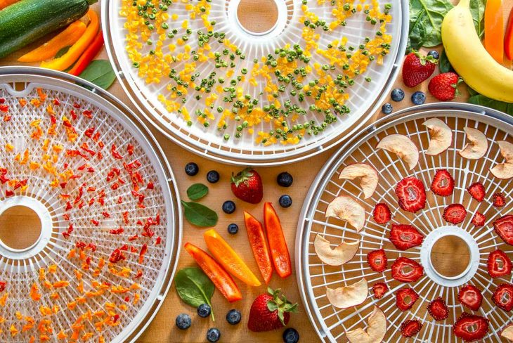 Colorful dehydrated fruit and vegetables with fresh fruit around
