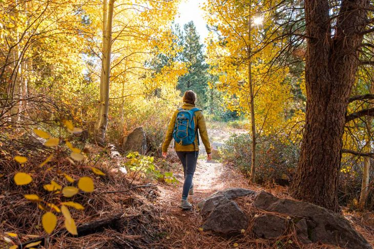 Megan is wearing a blue daypack and hiking on a trail among yellow aspen trees