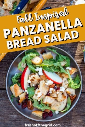 "Pinterest graphic with text overlay reading ""Fall Inspired Panzanella Bread Salad"""