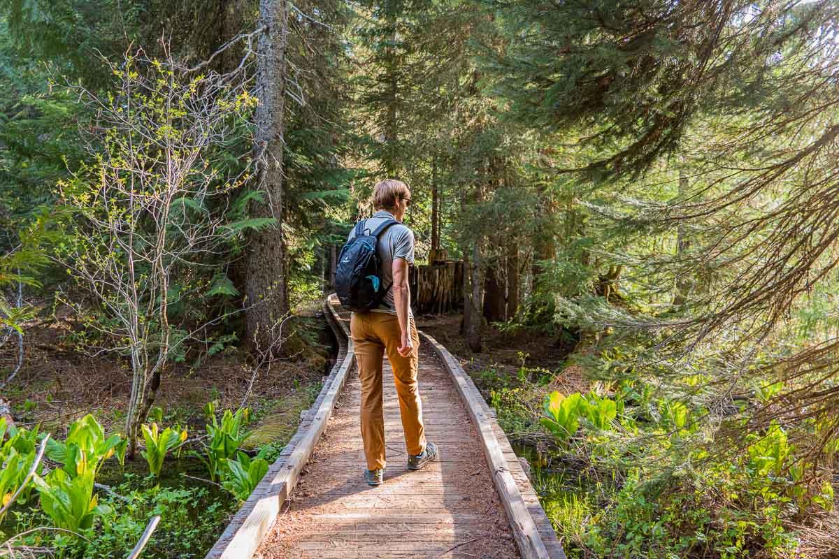 Michael walking on a wooded boardwalk trail
