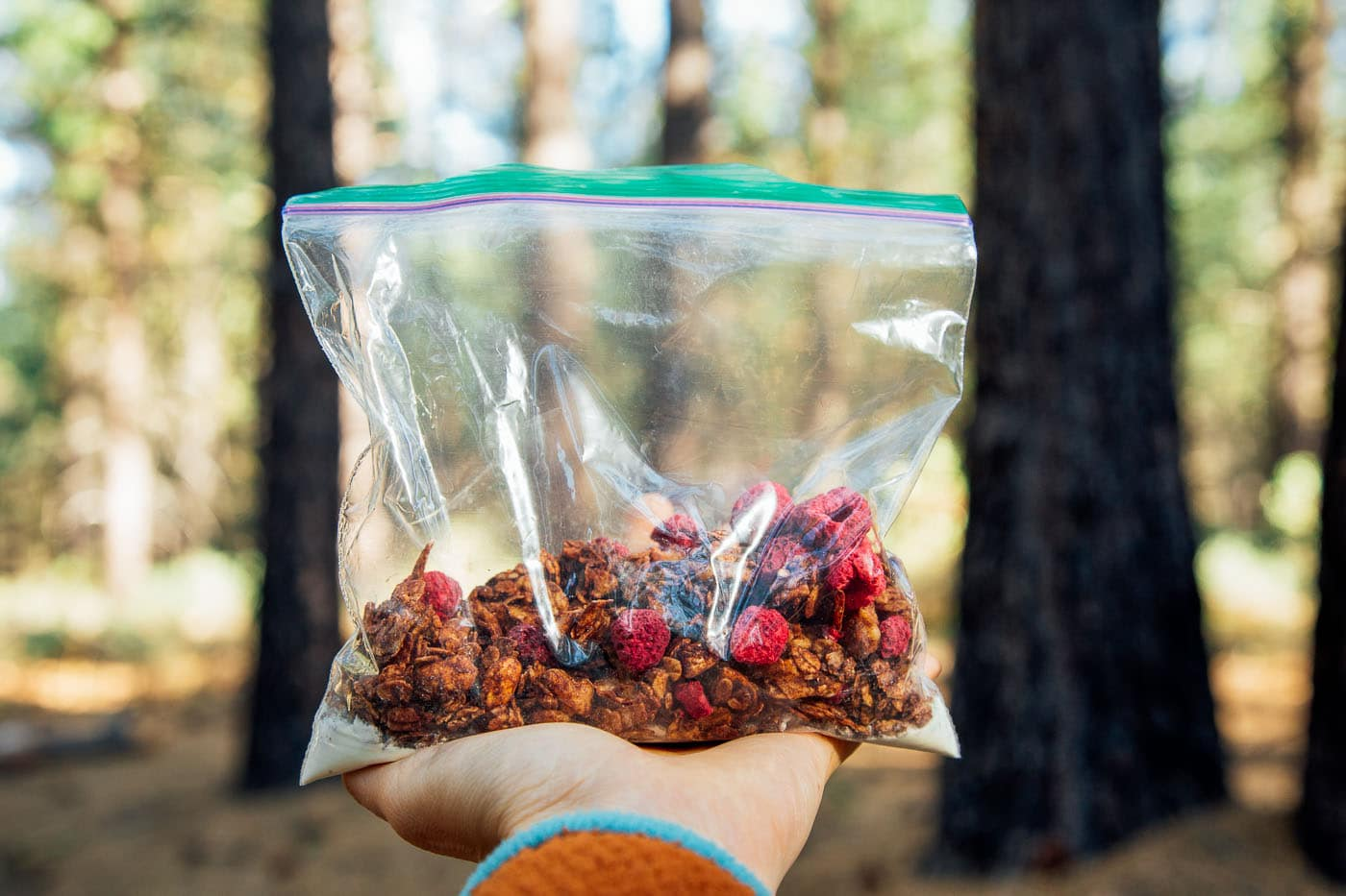 Coconut chocolate granola dotted with raspberries in a ziplock bag