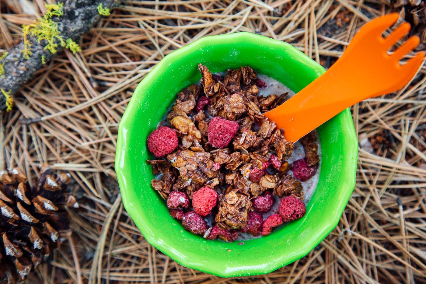 Coconut chocolate granola dotted with raspberries in a green bowl