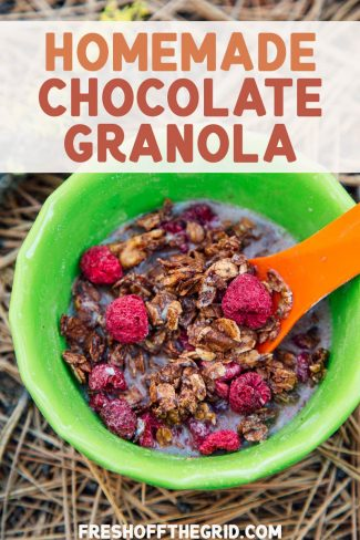 """Pinterest graphic with text overlay reading """"Homemade Chocolate Granola"""""""