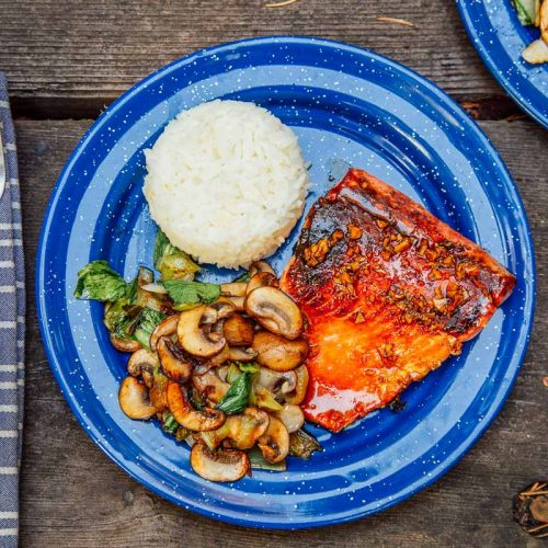 Honey glazed salmon, rice, and vegetables on a blue camping plate.
