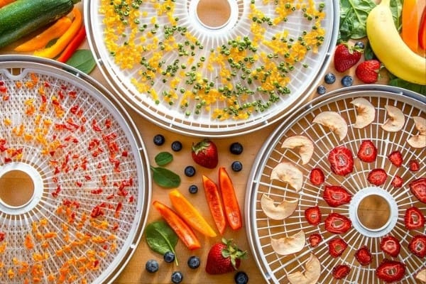 Cut fruits and vegetables on dehydrator trays