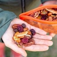 Trail Mix in a hand
