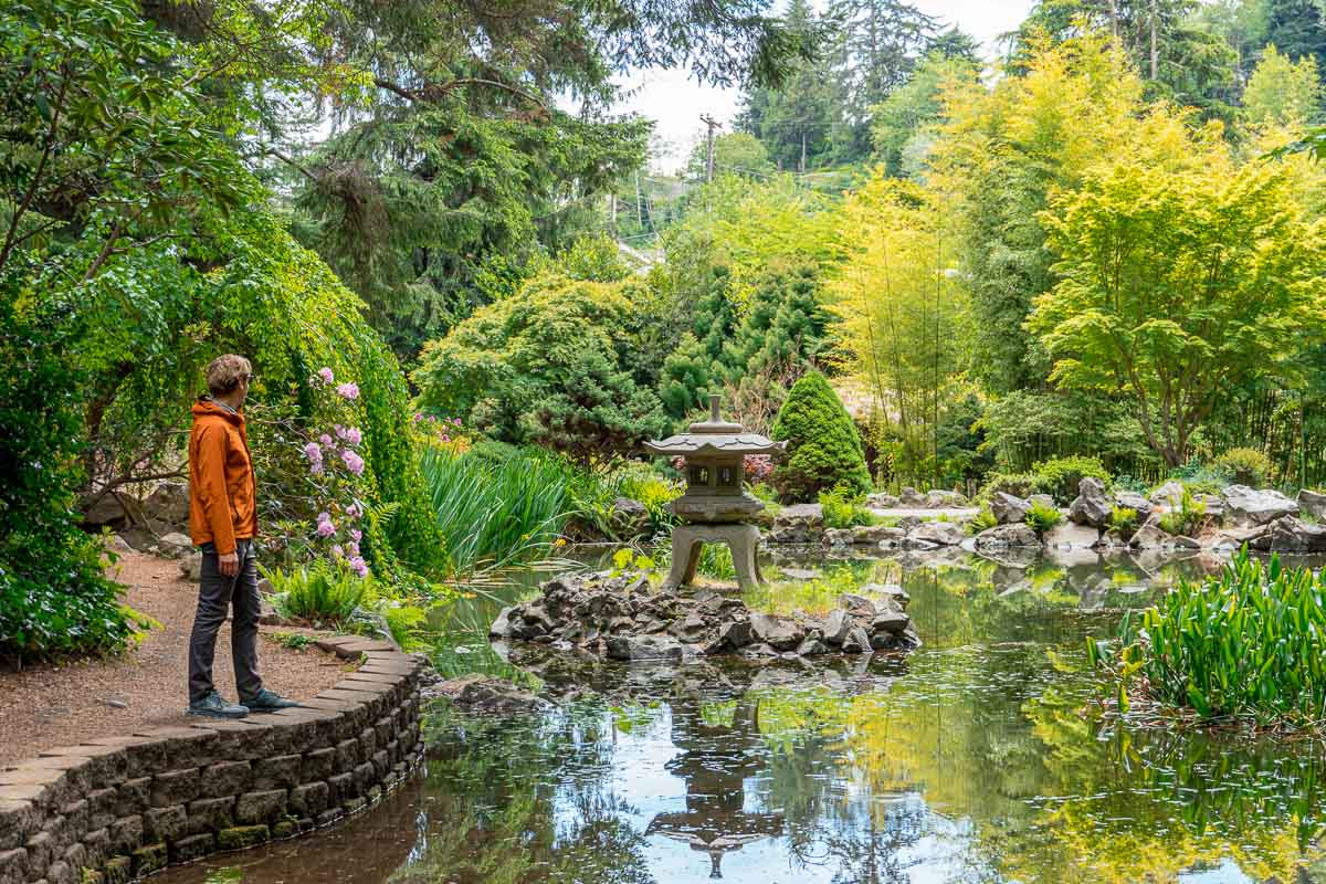 Michael stands on a sandy path and looks out over a pond in a Japanese style garden.