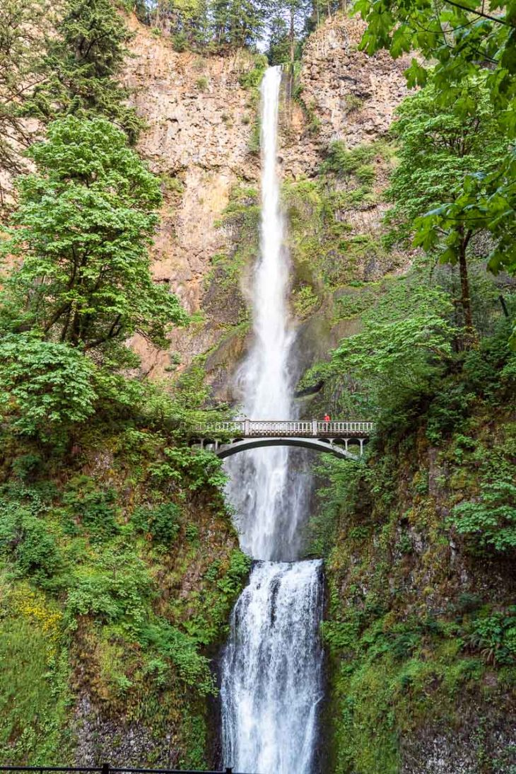 Michael stands on a bridge and looks at Multnomah Falls