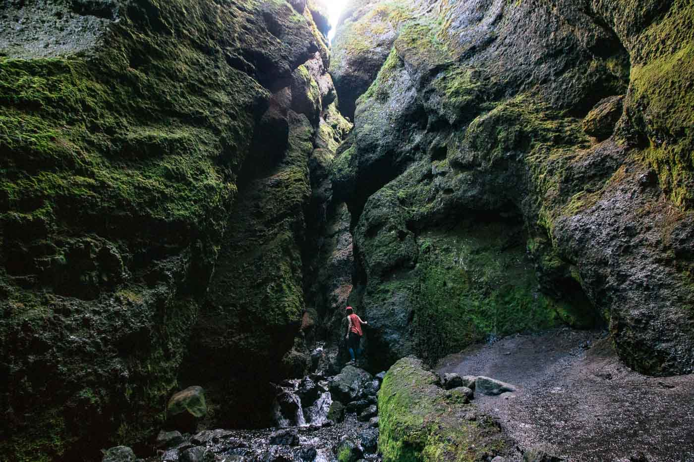 Woman standing on a rock peering into the mossy walls of the Raudfeldsgja Gorge
