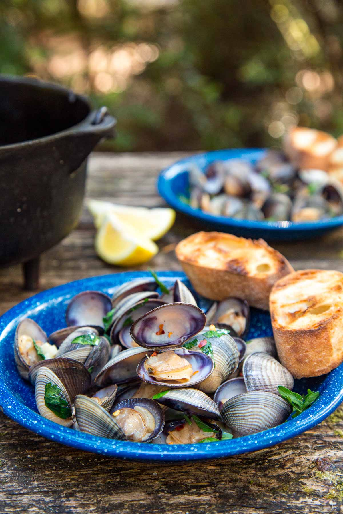 Steamed clams in a blue bowl with grilled bread on the side. A Dutch oven and trees are in the background.