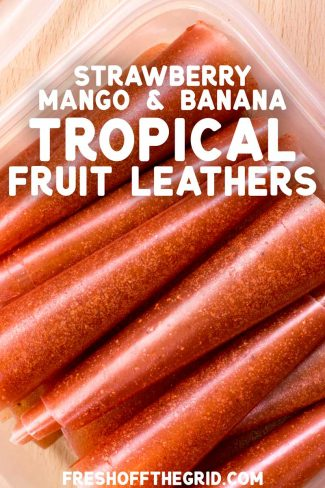 "Pinterest graphic with text overlay reading ""Mango, strawberry, and banana tropical fruit leathers"""