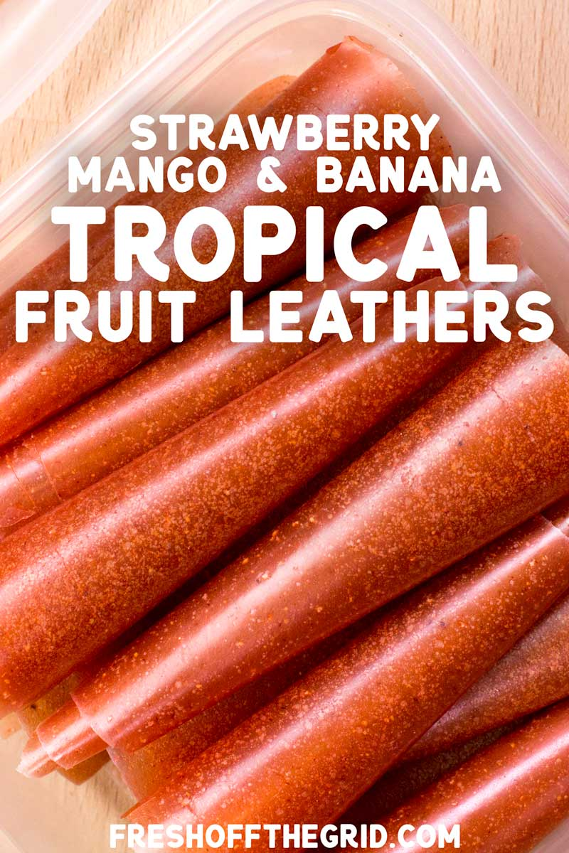 These tropical fruit leathers taste like a ray of sunshine. Made of strawberries, mango, and bananas, this is the perfect snack to lift your spirits on or off the trail! via @freshoffthegrid