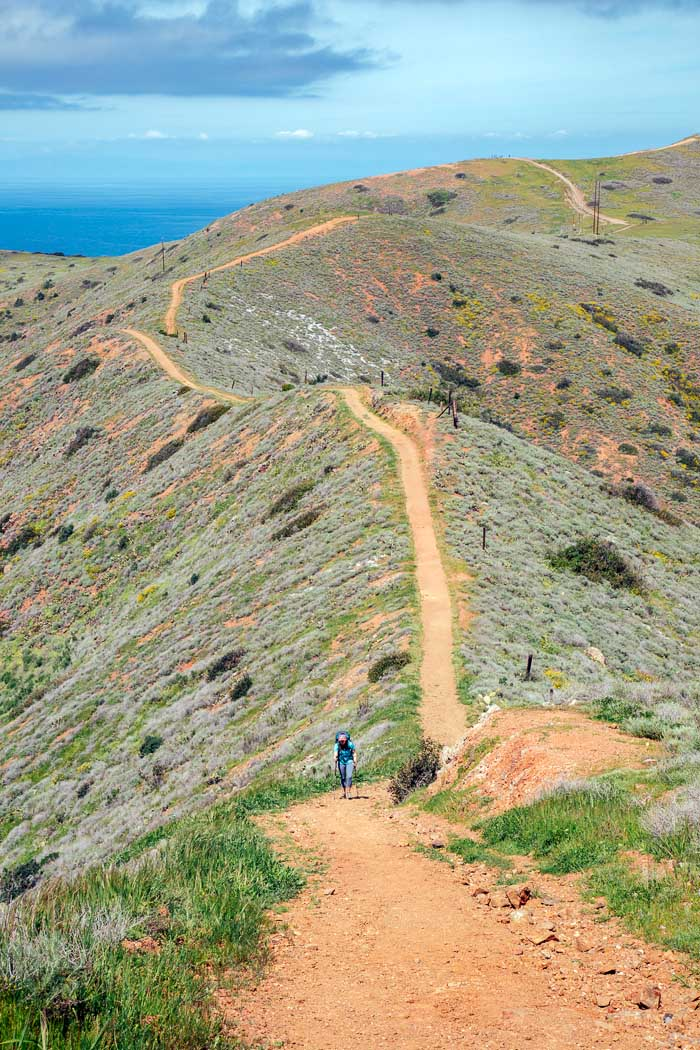 A woman backpacking up a steep hill on the Trans Catalina Trail