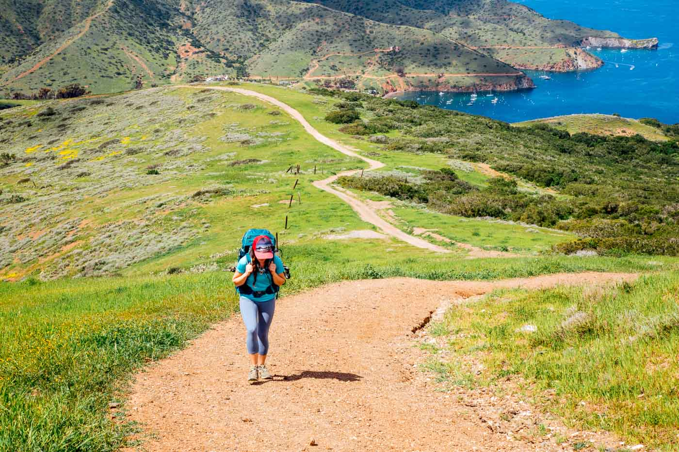 A woman hiking up a steep winding hill on the Trans Catalina Trail