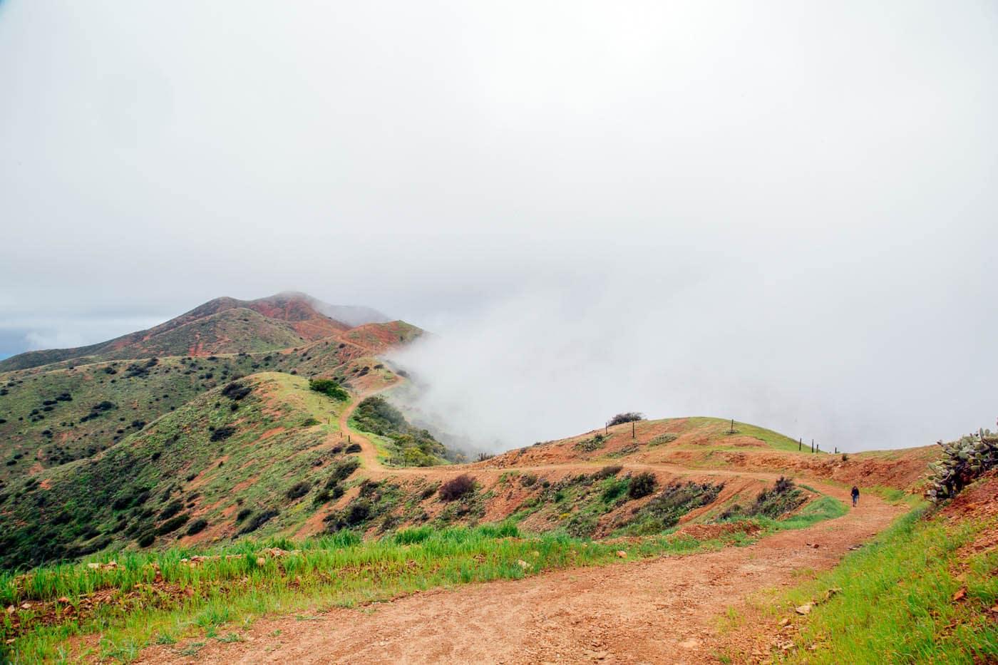 Ridgeline on the Trans Catalina Trail