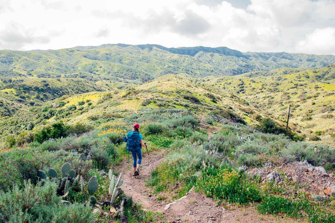 Woman hiking on a trail surrounded by cactus and sagebrush