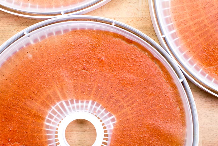 Overhead shot of dehydrated fruit leathers on a dehydrator tray.