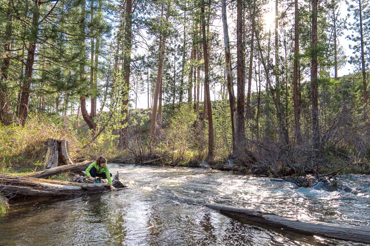 A wide view of a river and forest. Megan is sitting on a log collecting water to filter.