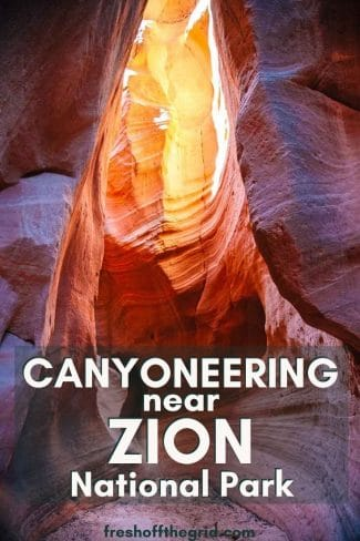 "Pinterest graphic with text overlay reading ""Canyoneering near Zion National Park"""