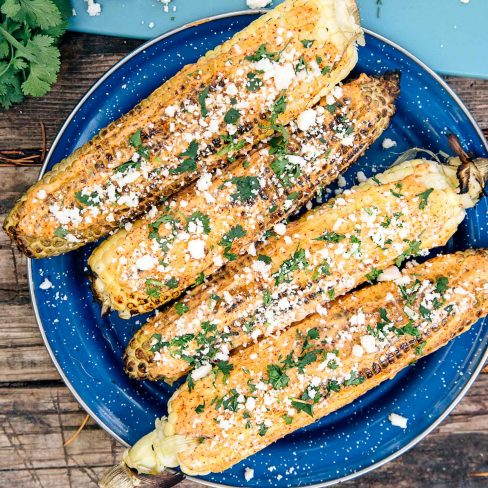 Four ears of corn with crumbled cheese and cilantro on a blue plate