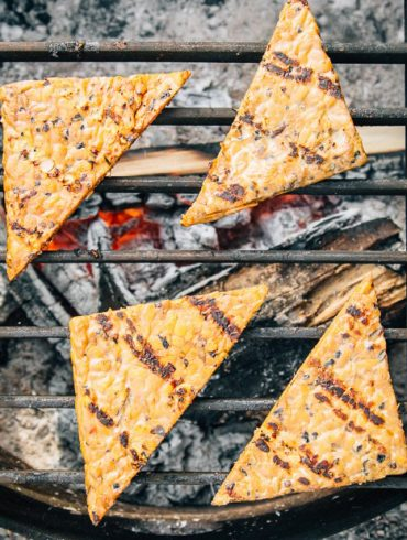 Four triangle pieces of tempeh on a campfire grill