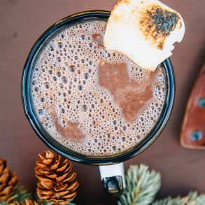 Nutella hot chocolate in a mug topped with a toasted marshmallow