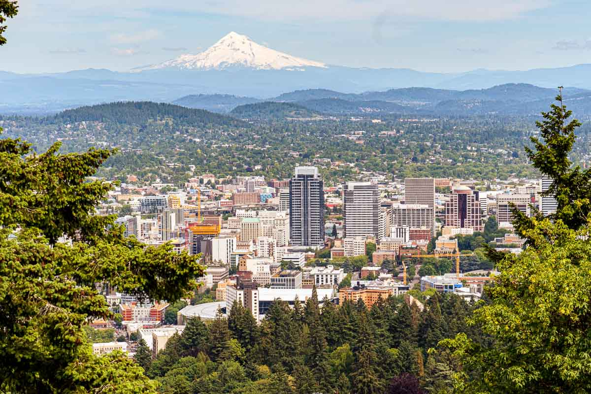 Tree branches framing a view of the city of Portland Oregon with Mt. Hood in the background.